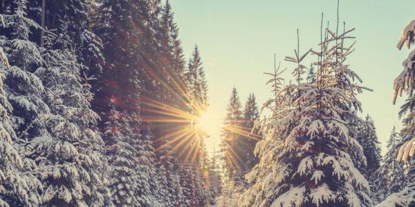 avanza-enla-nieve