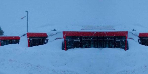 galeria4-nieve