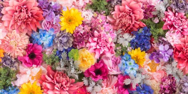 girona-temps de flors