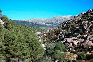 Parque Natural de La Pedriza