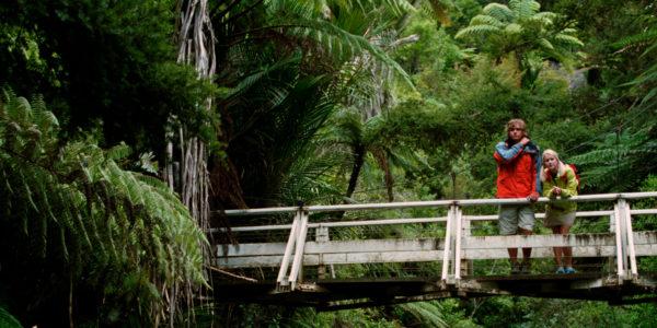 puente-del-pilar-turismo rural