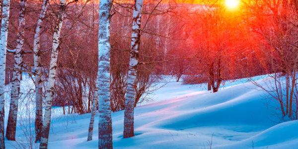 puente de diciembre-nieve